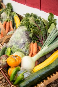 The Community Food Assessment